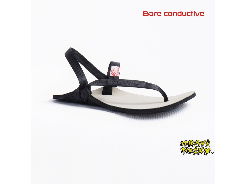 bare conductive fb2